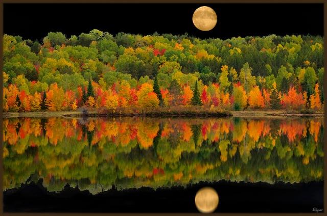 AutumnLeavesBPNB