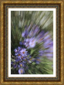 FotoSketcher-DSC_2035B