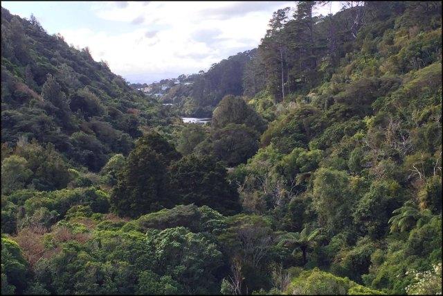 newzealandcookislands2016-283
