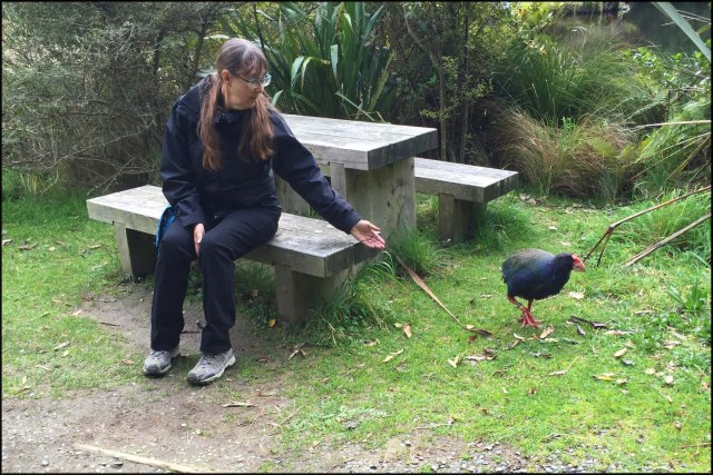 newzealandcookislands2016-285