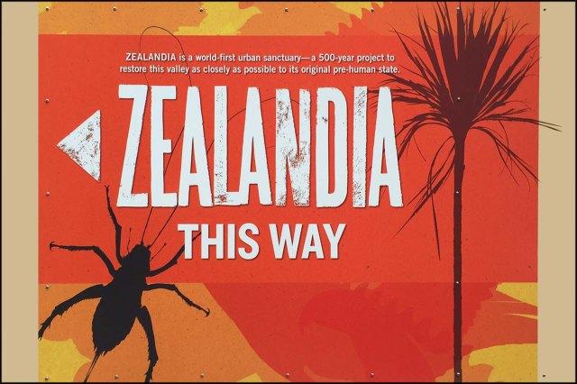 newzealandcookislands2016-287