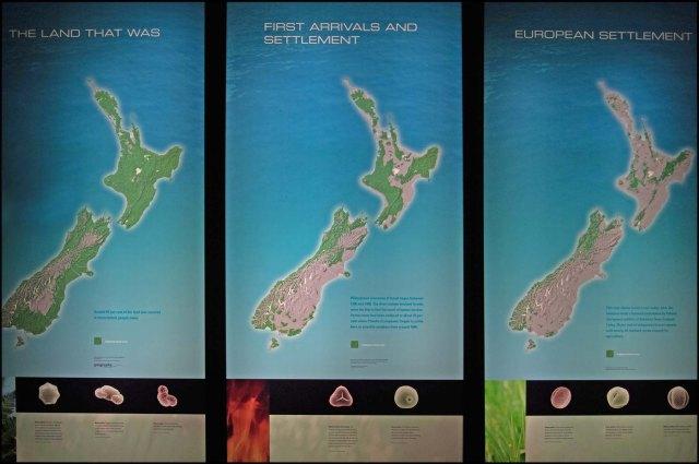 newzealandcookislands2016-305