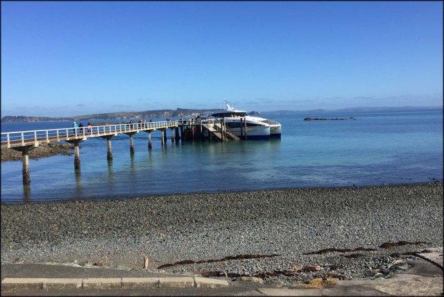 newzealandcookislands2016-470